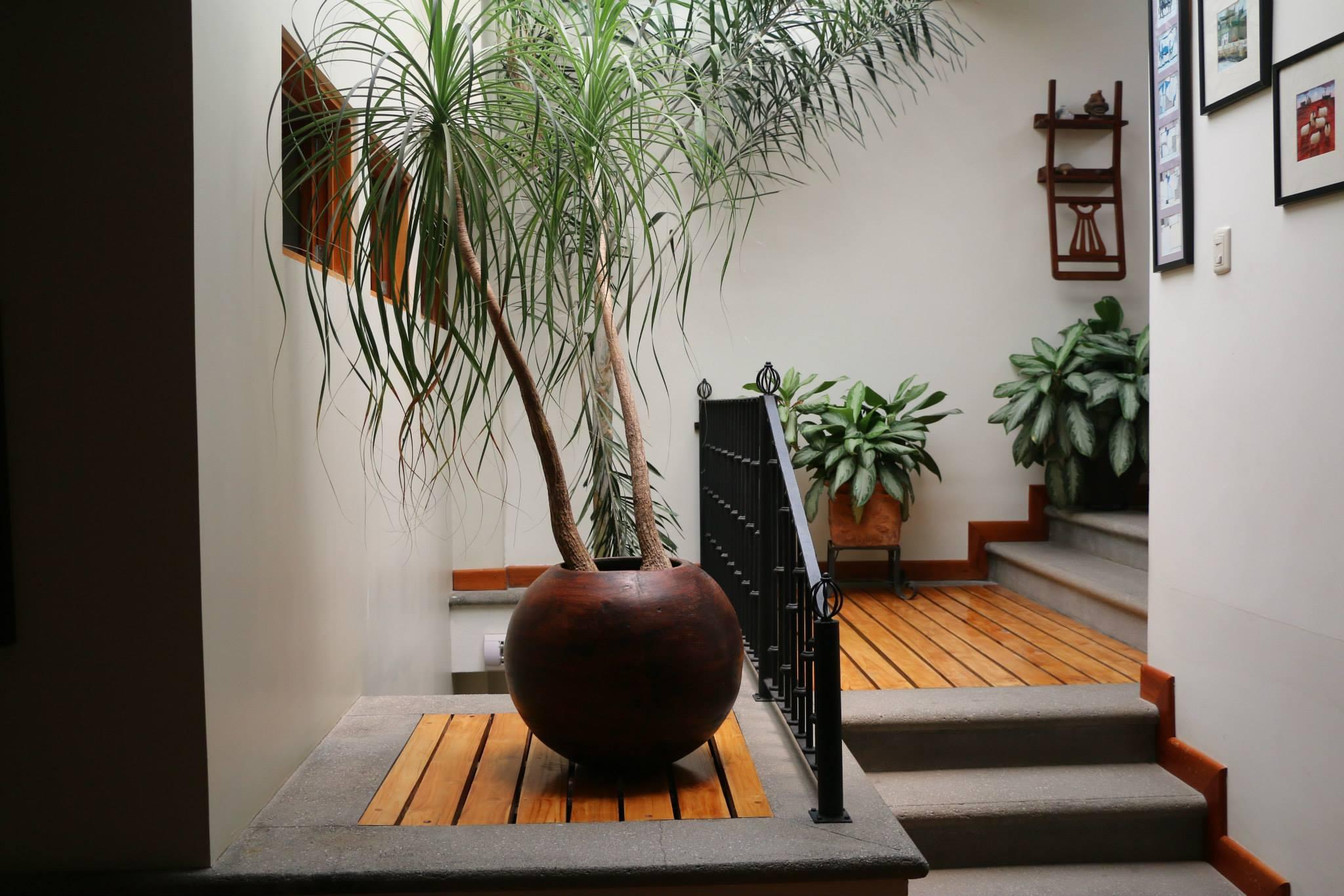 Indoor Air Quality Perris CA